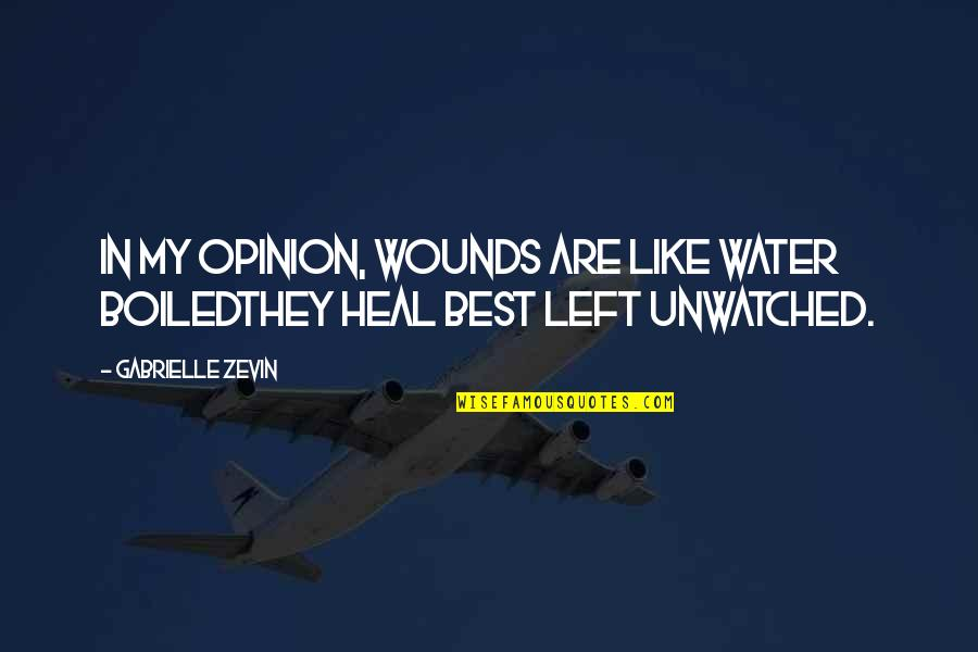 Heal My Wounds Quotes By Gabrielle Zevin: In my opinion, wounds are like water boiledthey
