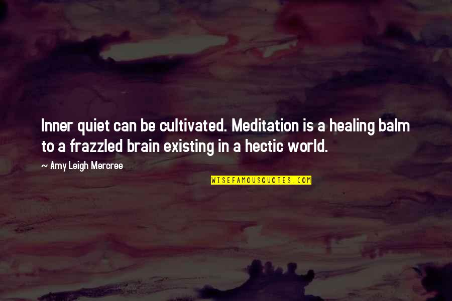 Healing The World Quotes By Amy Leigh Mercree: Inner quiet can be cultivated. Meditation is a
