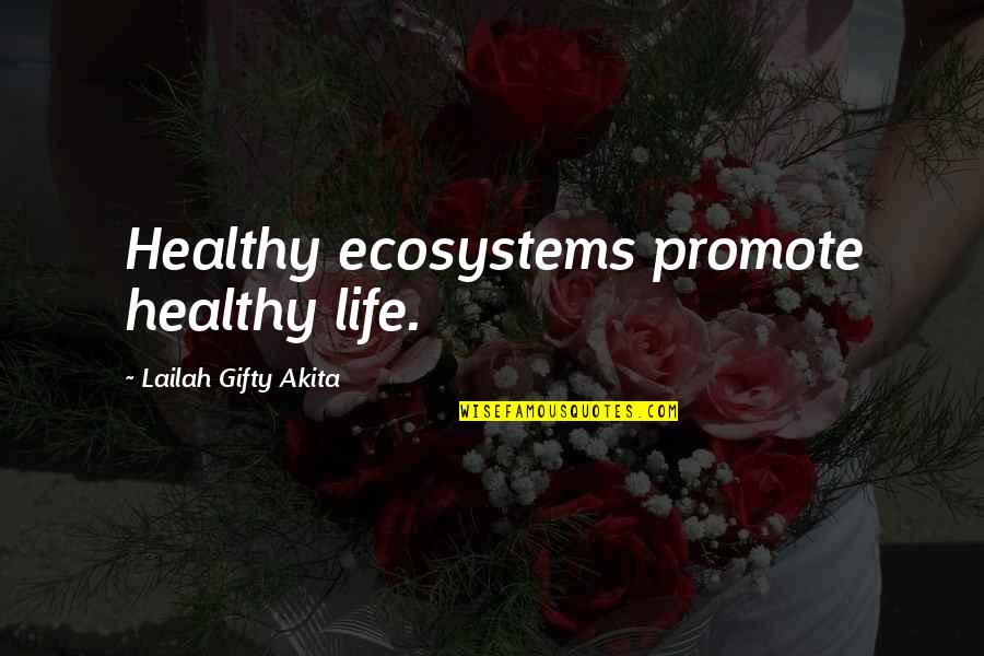 Health And Environment Quotes By Lailah Gifty Akita: Healthy ecosystems promote healthy life.