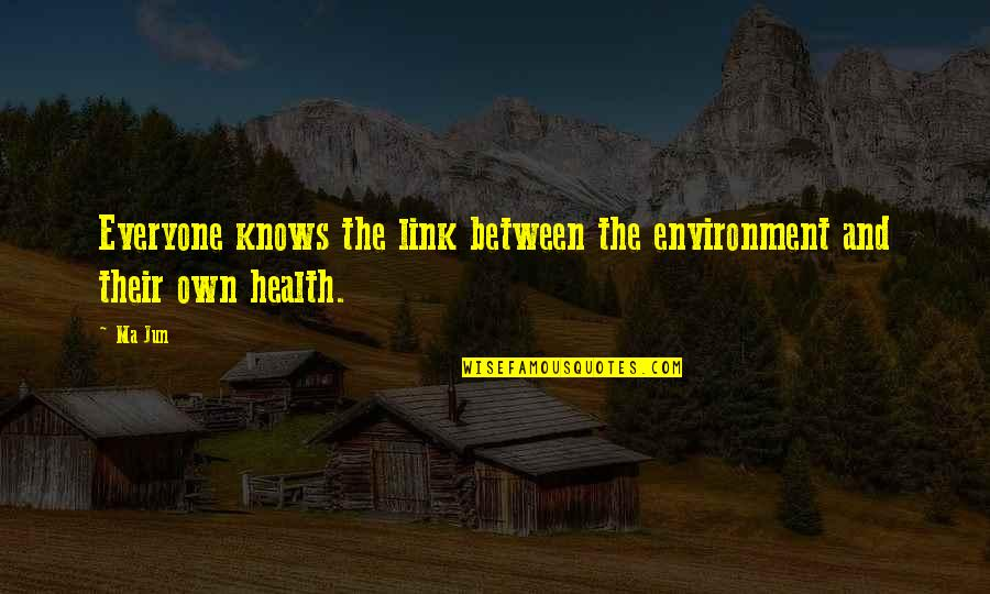 Health And Environment Quotes By Ma Jun: Everyone knows the link between the environment and