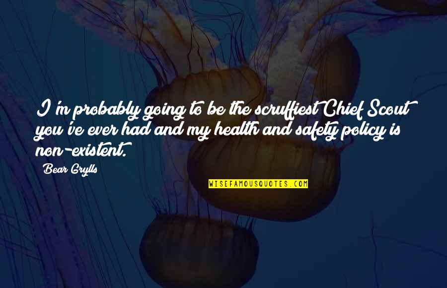 Health Policy Quotes By Bear Grylls: I'm probably going to be the scruffiest Chief