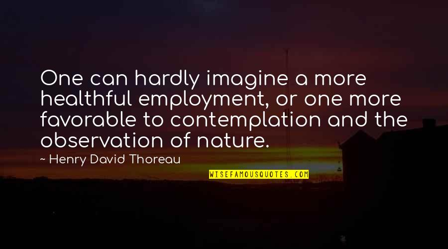 Healthful Quotes By Henry David Thoreau: One can hardly imagine a more healthful employment,