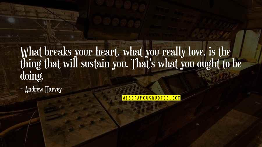 Heart Breaks Love Quotes By Andrew Harvey: What breaks your heart, what you really love,