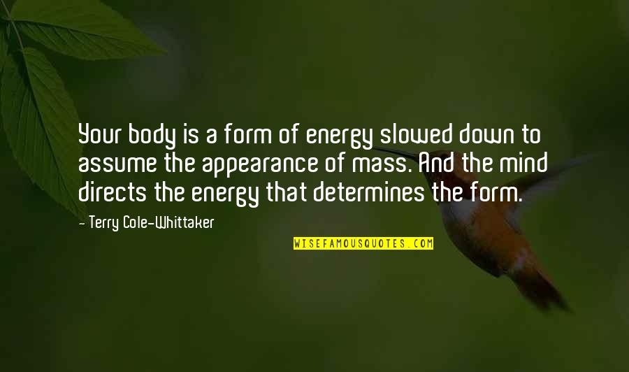 Heartbreak Pinterest Quotes By Terry Cole-Whittaker: Your body is a form of energy slowed