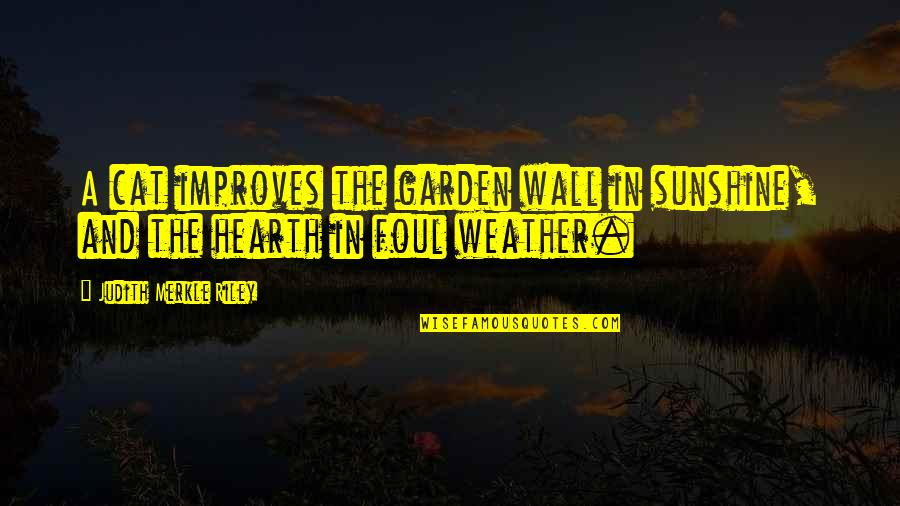 Hearth's Quotes By Judith Merkle Riley: A cat improves the garden wall in sunshine,