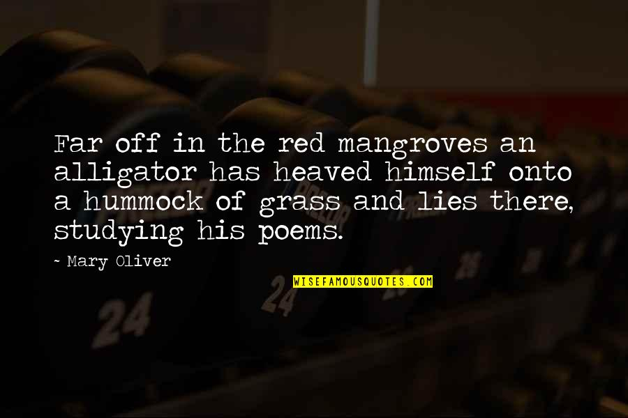 Heaved Quotes By Mary Oliver: Far off in the red mangroves an alligator
