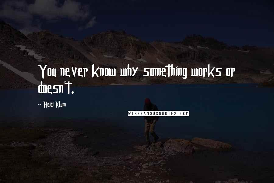 Heidi Klum quotes: You never know why something works or doesn't.