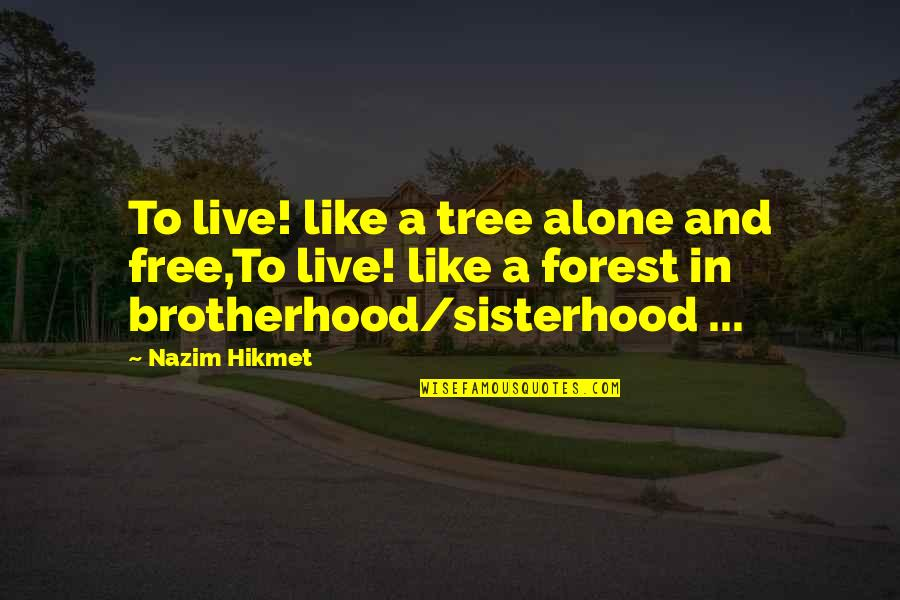 Hemmung Quotes By Nazim Hikmet: To live! like a tree alone and free,To