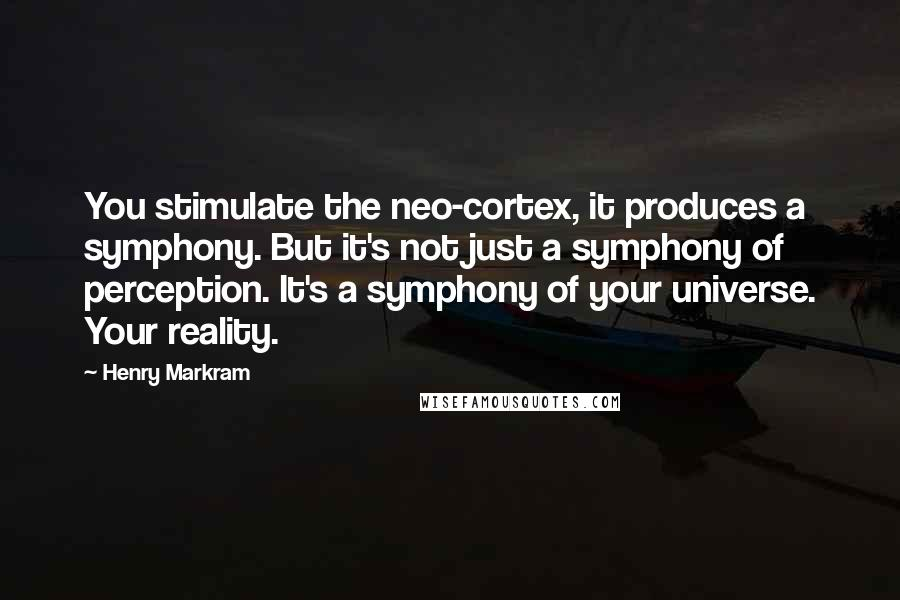 Henry Markram quotes: You stimulate the neo-cortex, it produces a symphony. But it's not just a symphony of perception. It's a symphony of your universe. Your reality.