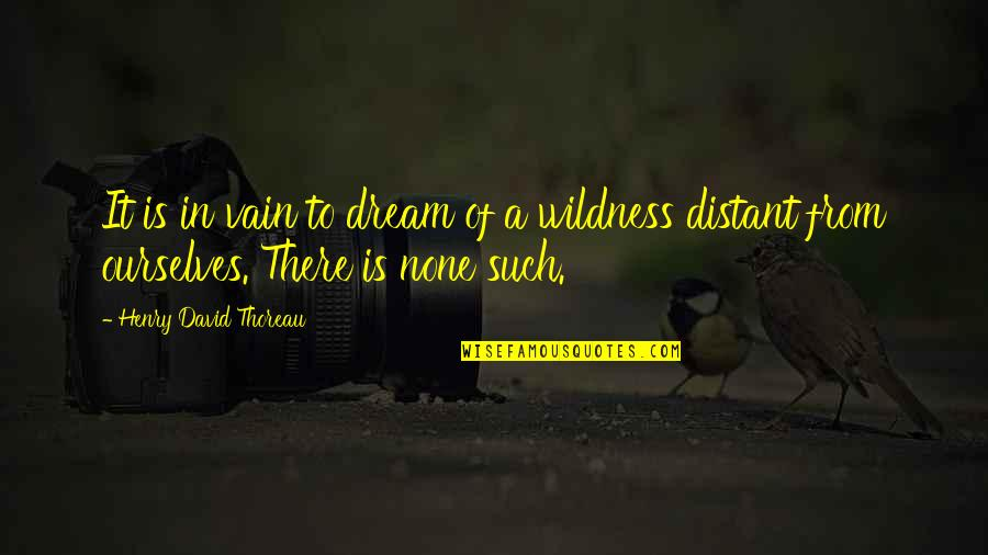 Henry Quotes By Henry David Thoreau: It is in vain to dream of a