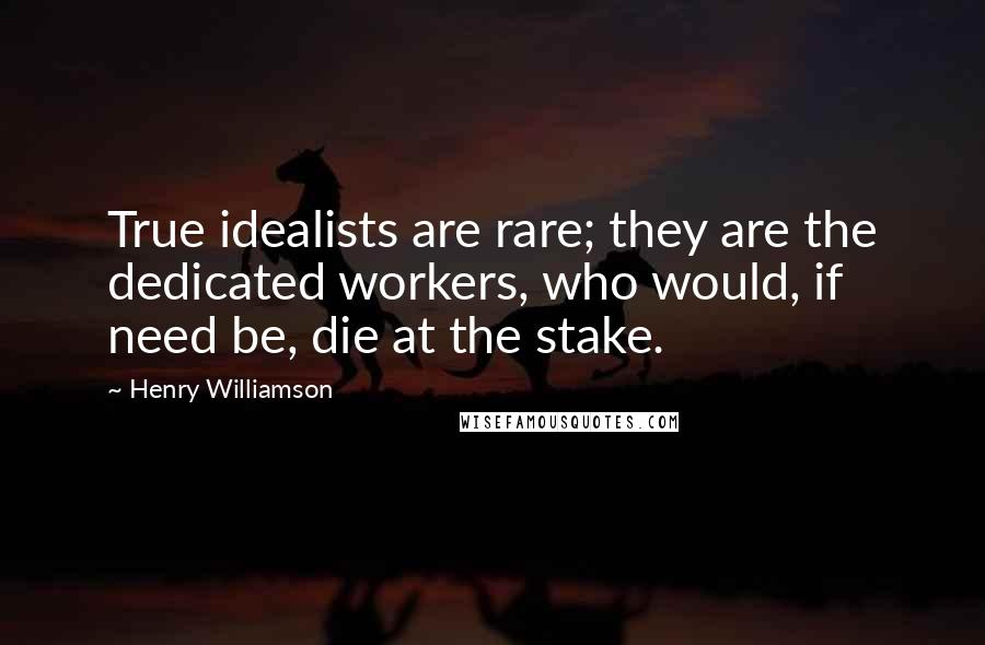 Henry Williamson quotes: True idealists are rare; they are the dedicated workers, who would, if need be, die at the stake.