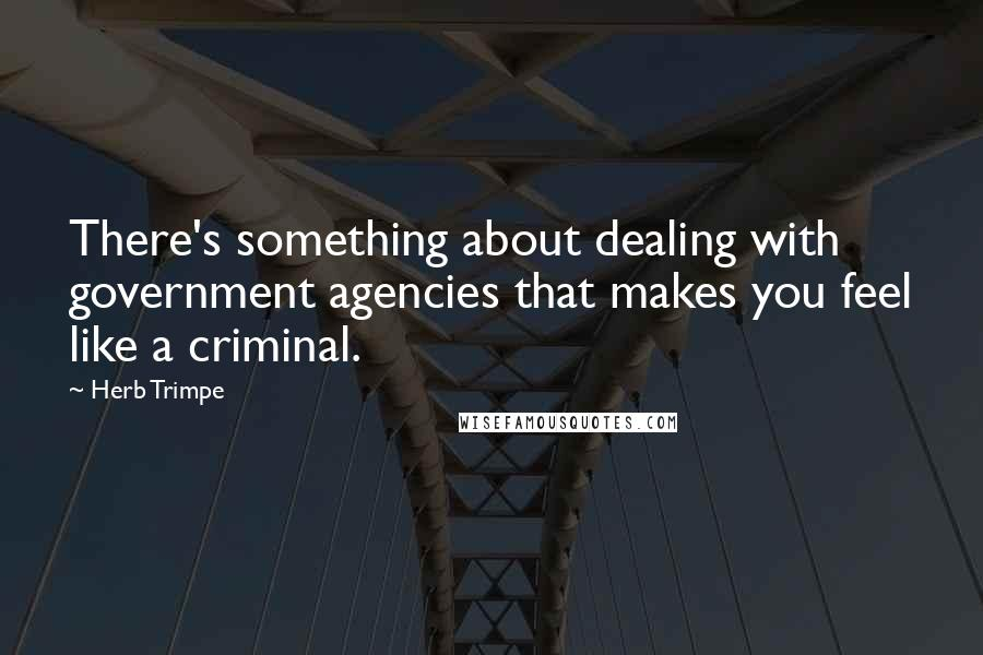 Herb Trimpe quotes: There's something about dealing with government agencies that makes you feel like a criminal.