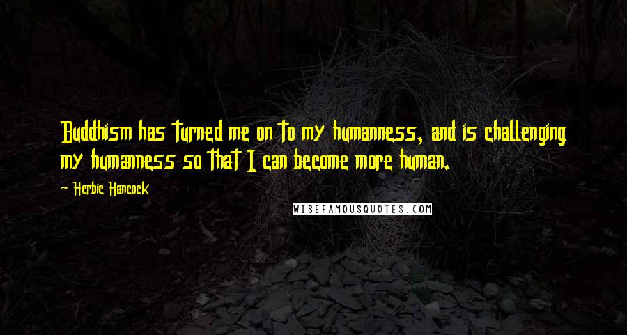 Herbie Hancock quotes: Buddhism has turned me on to my humanness, and is challenging my humanness so that I can become more human.