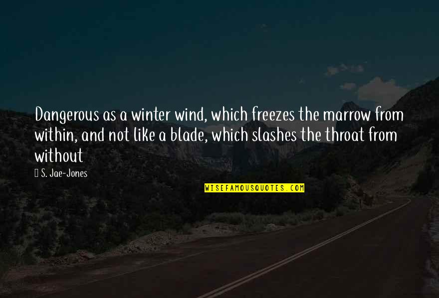 Hermann Ebbinghaus Quotes By S. Jae-Jones: Dangerous as a winter wind, which freezes the