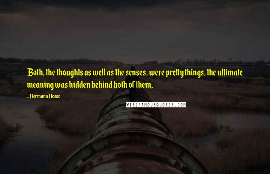 Hermann Hesse quotes: Both, the thoughts as well as the senses, were pretty things, the ultimate meaning was hidden behind both of them,