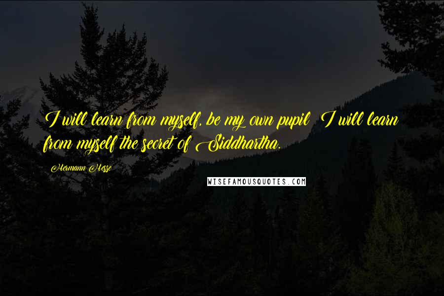 Hermann Hesse quotes: I will learn from myself, be my own pupil; I will learn from myself the secret of Siddhartha.