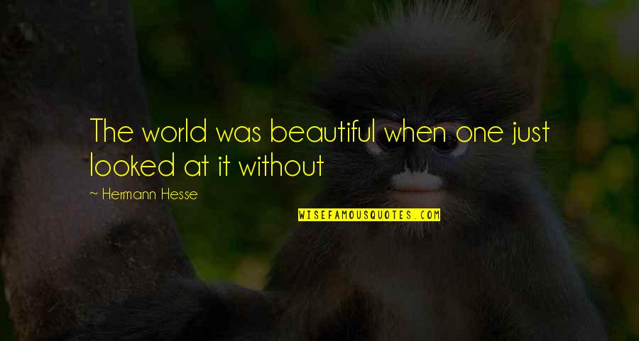 Hermann Hesse Quotes By Hermann Hesse: The world was beautiful when one just looked