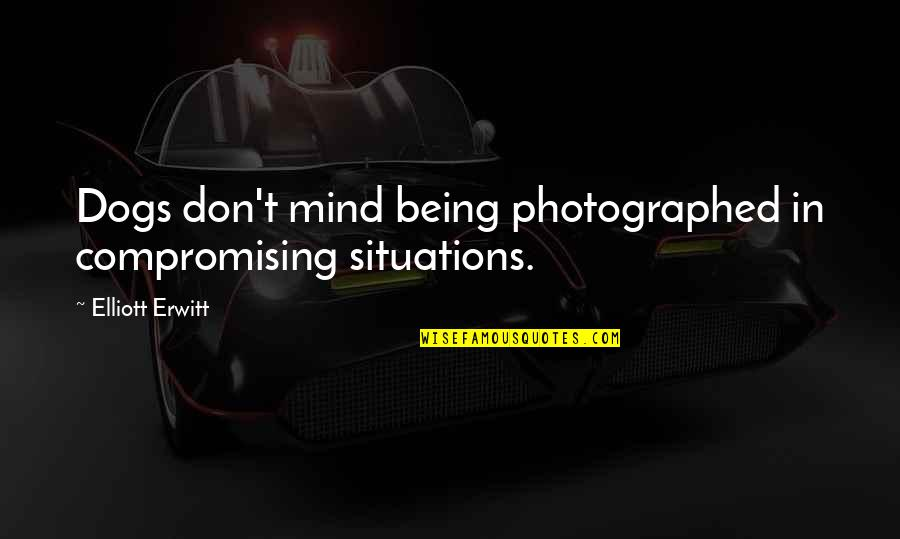 Hermetica Quotes By Elliott Erwitt: Dogs don't mind being photographed in compromising situations.