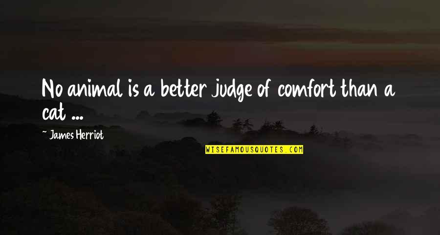 Herriot Quotes By James Herriot: No animal is a better judge of comfort