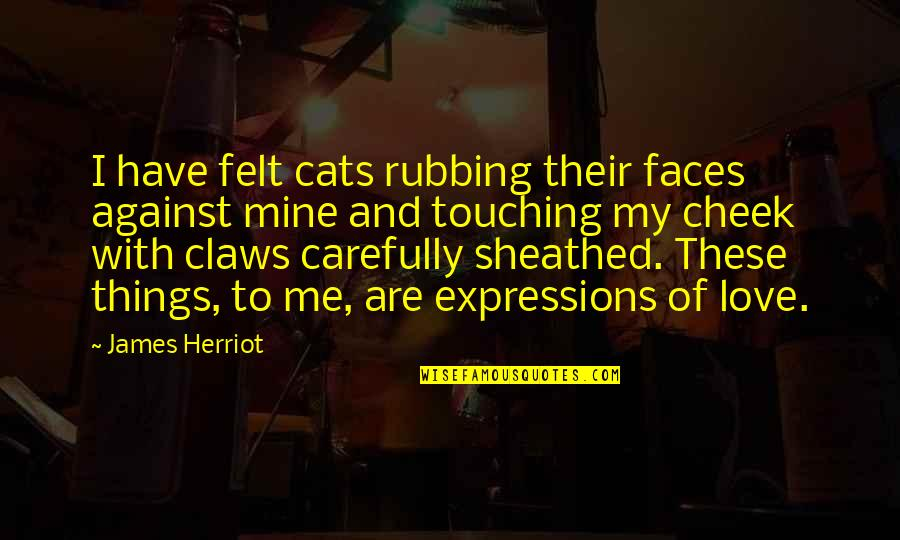 Herriot Quotes By James Herriot: I have felt cats rubbing their faces against