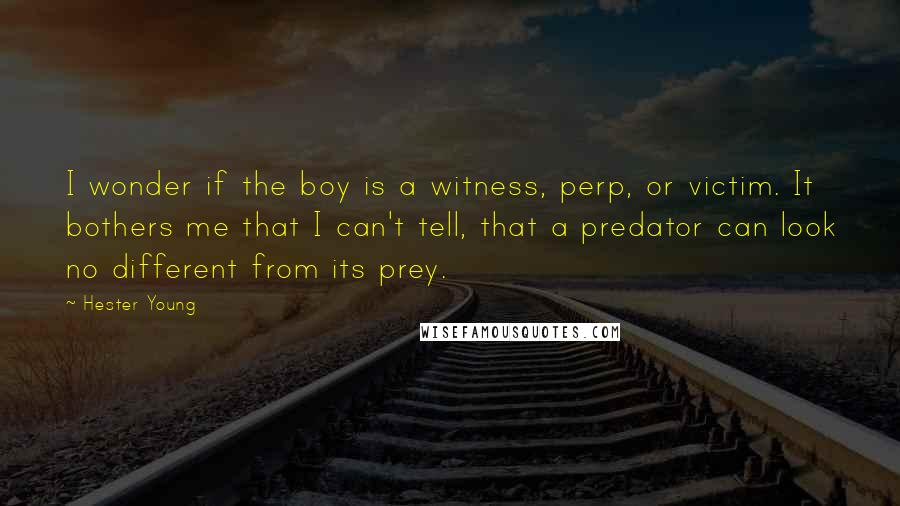 Hester Young quotes: I wonder if the boy is a witness, perp, or victim. It bothers me that I can't tell, that a predator can look no different from its prey.