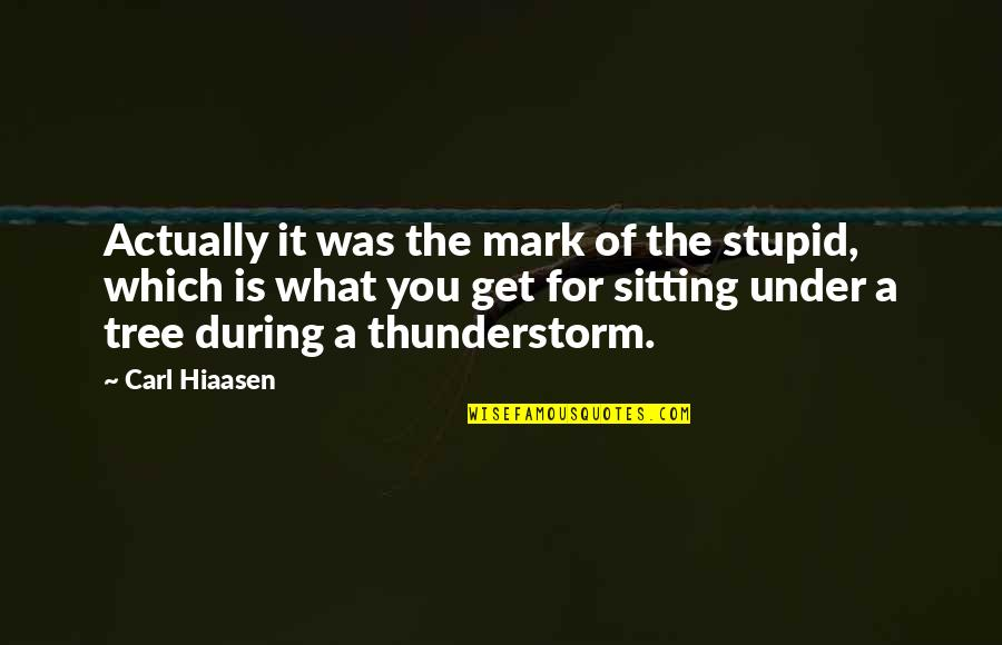 Hiaasen Quotes By Carl Hiaasen: Actually it was the mark of the stupid,