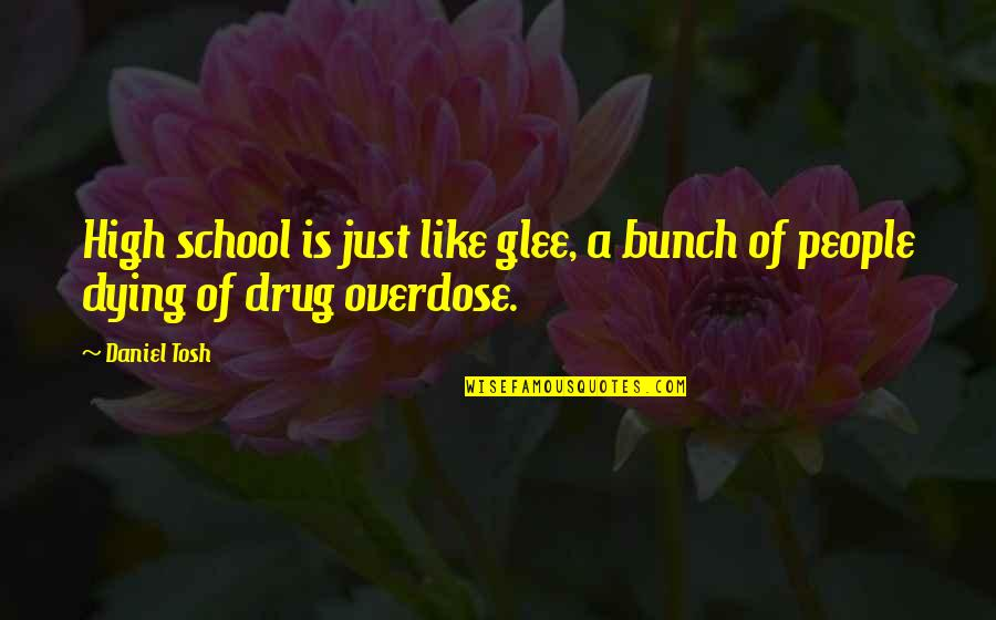 High School Is Like Quotes By Daniel Tosh: High school is just like glee, a bunch