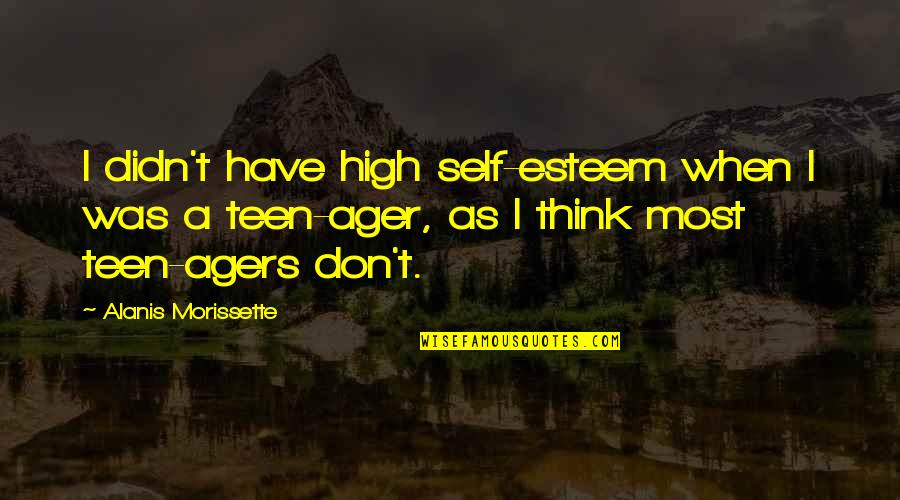 High Self Esteem Quotes By Alanis Morissette: I didn't have high self-esteem when I was