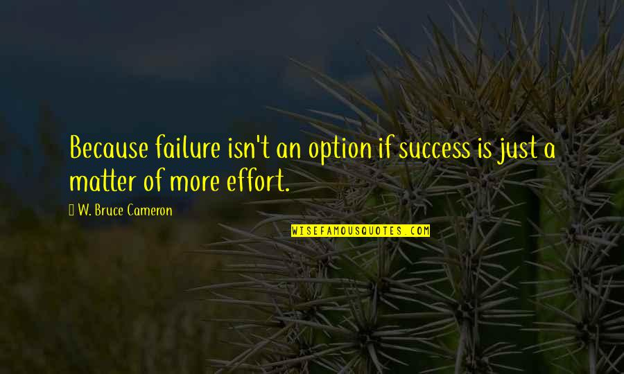 Hip Hop Guys Quotes By W. Bruce Cameron: Because failure isn't an option if success is