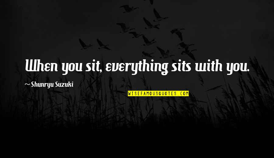 Historical Commodity Prices Quotes By Shunryu Suzuki: When you sit, everything sits with you.