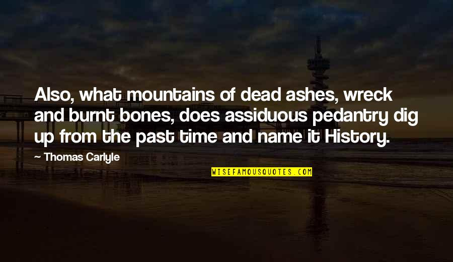 History And The Past Quotes By Thomas Carlyle: Also, what mountains of dead ashes, wreck and