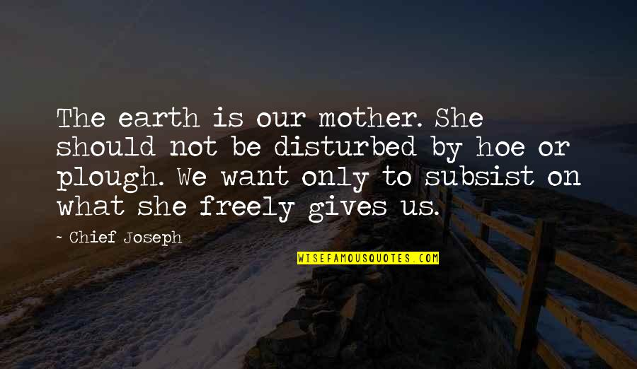 Hoe Quotes By Chief Joseph: The earth is our mother. She should not