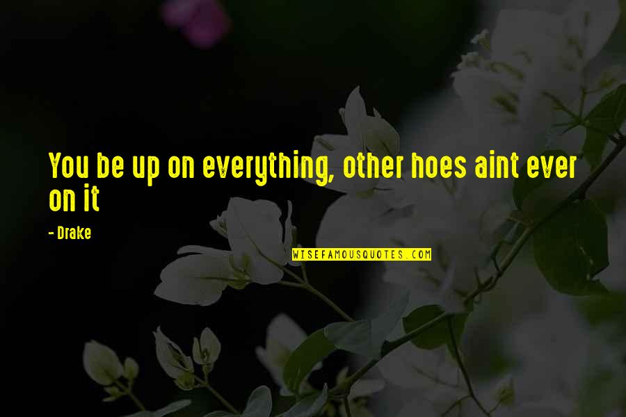Hoe Quotes By Drake: You be up on everything, other hoes aint