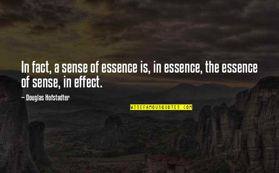 Hofstadter Douglas Quotes By Douglas Hofstadter: In fact, a sense of essence is, in
