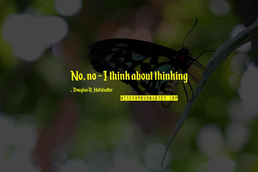 Hofstadter Douglas Quotes By Douglas R. Hofstadter: No, no - I think about thinking