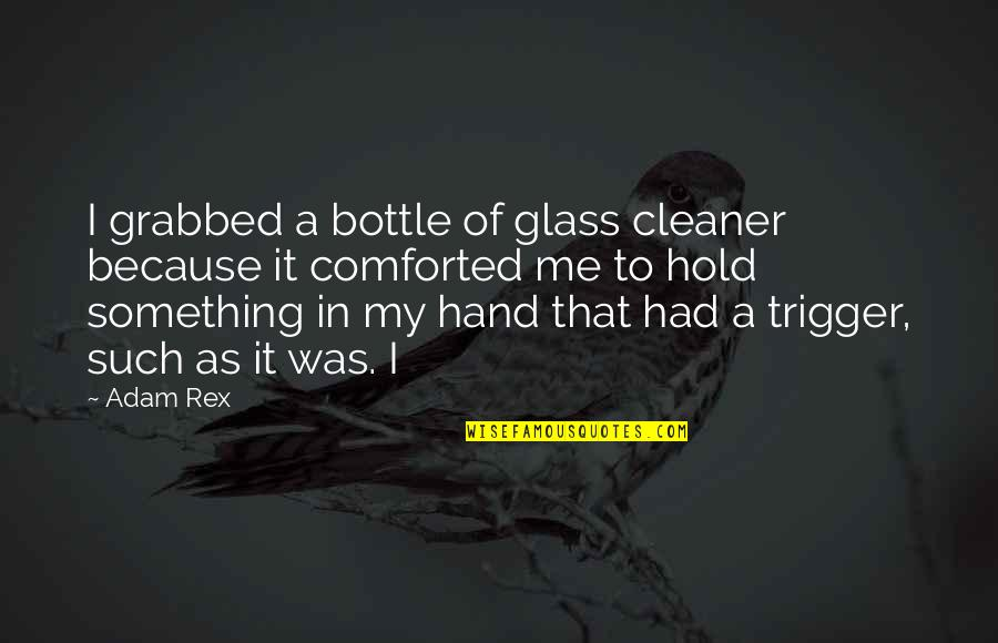 Hold My Hand Quotes By Adam Rex: I grabbed a bottle of glass cleaner because