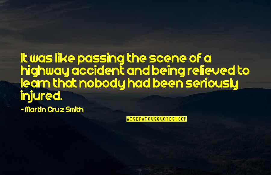 Holodnuyu Quotes By Martin Cruz Smith: It was like passing the scene of a