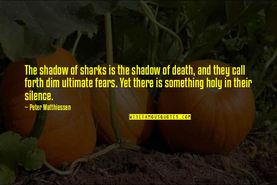 Holy Something Quotes By Peter Matthiessen: The shadow of sharks is the shadow of