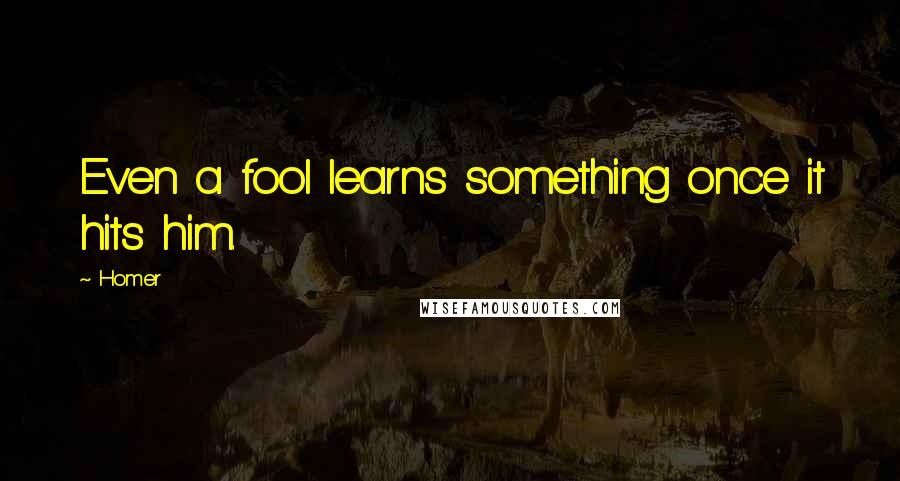 Homer quotes: Even a fool learns something once it hits him.