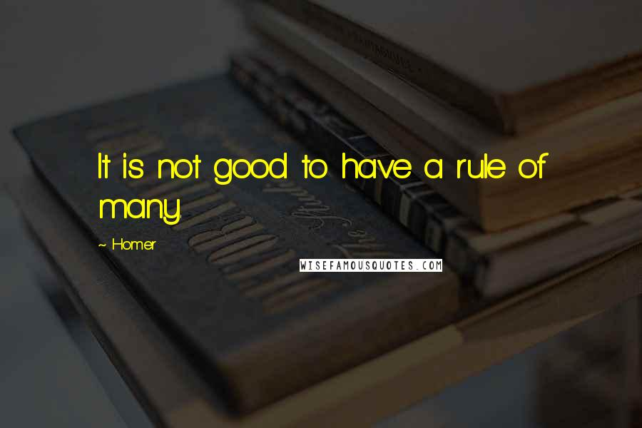 Homer quotes: It is not good to have a rule of many.