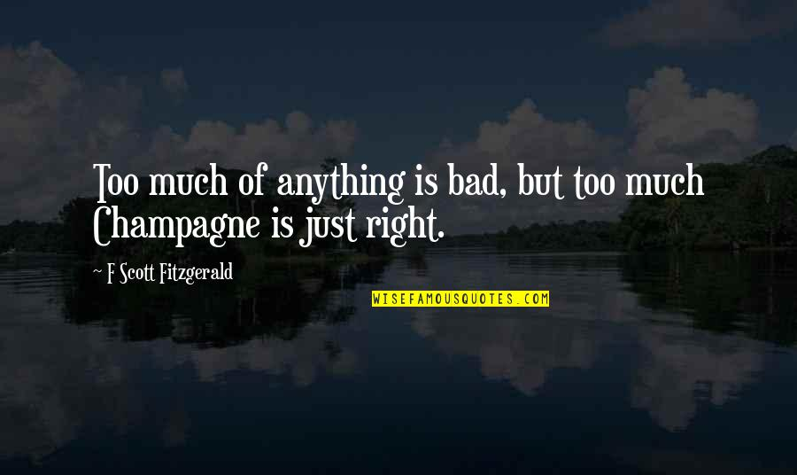 Honah Quotes By F Scott Fitzgerald: Too much of anything is bad, but too