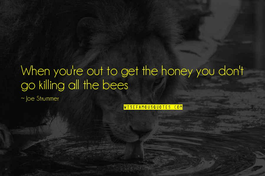 Honey Bees Quotes By Joe Strummer: When you're out to get the honey you