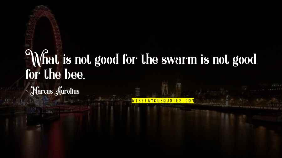 Honey Bees Quotes By Marcus Aurelius: What is not good for the swarm is