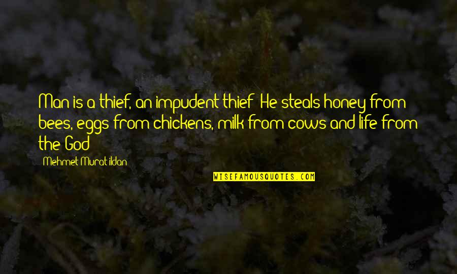 Honey Bees Quotes By Mehmet Murat Ildan: Man is a thief, an impudent thief! He