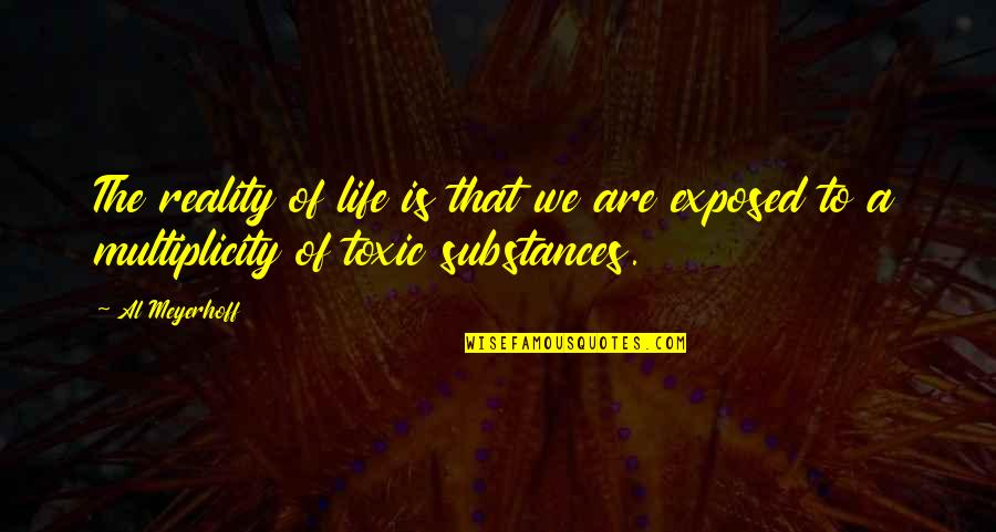 Honey Bunch Quotes By Al Meyerhoff: The reality of life is that we are