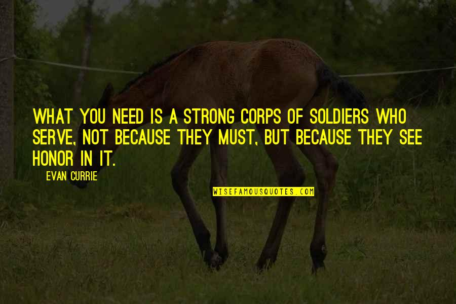 Honor Soldiers Quotes By Evan Currie: what you need is a strong corps of