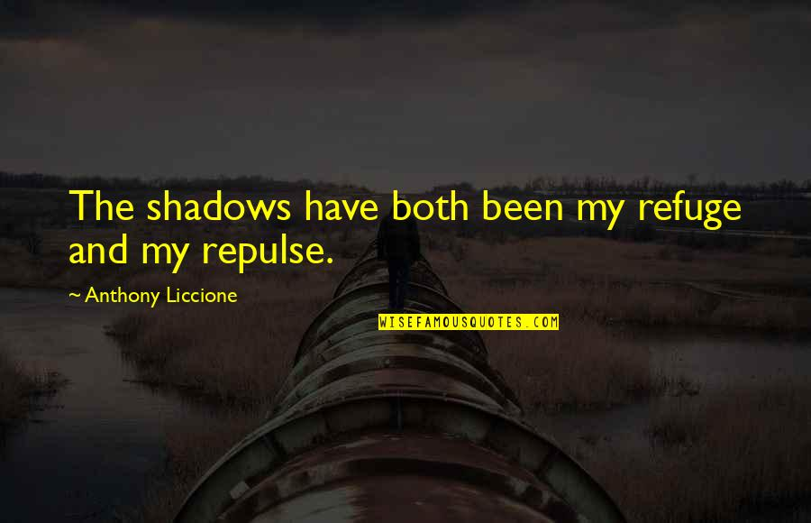 Hope And Light Quotes By Anthony Liccione: The shadows have both been my refuge and