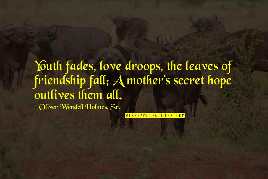 Hope Fades Quotes By Oliver Wendell Holmes, Sr.: Youth fades, love droops, the leaves of friendship