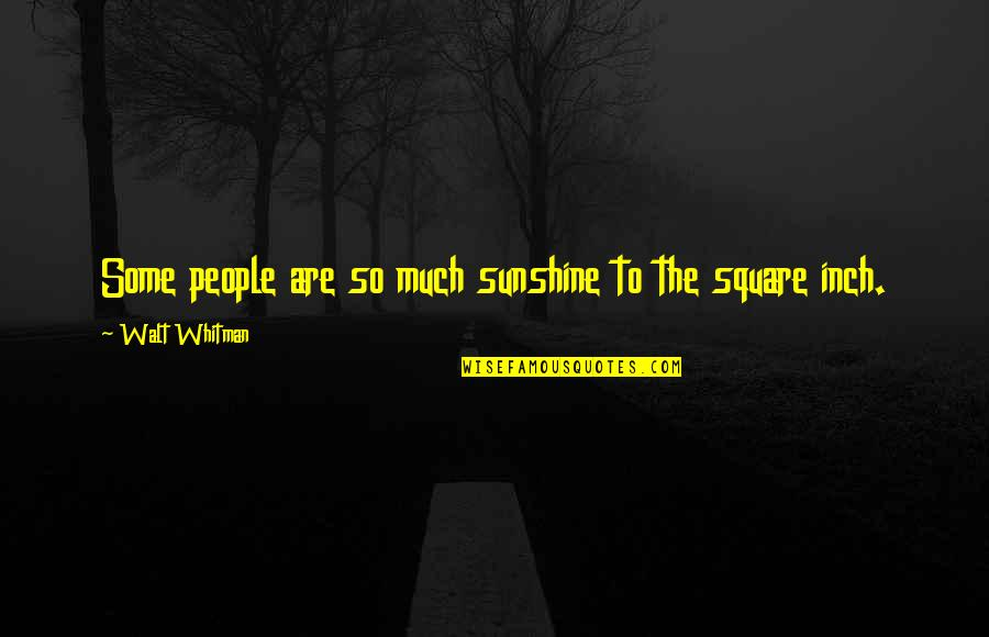 Hope Fades Quotes By Walt Whitman: Some people are so much sunshine to the