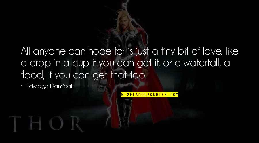 Hope Is For Quotes By Edwidge Danticat: All anyone can hope for is just a